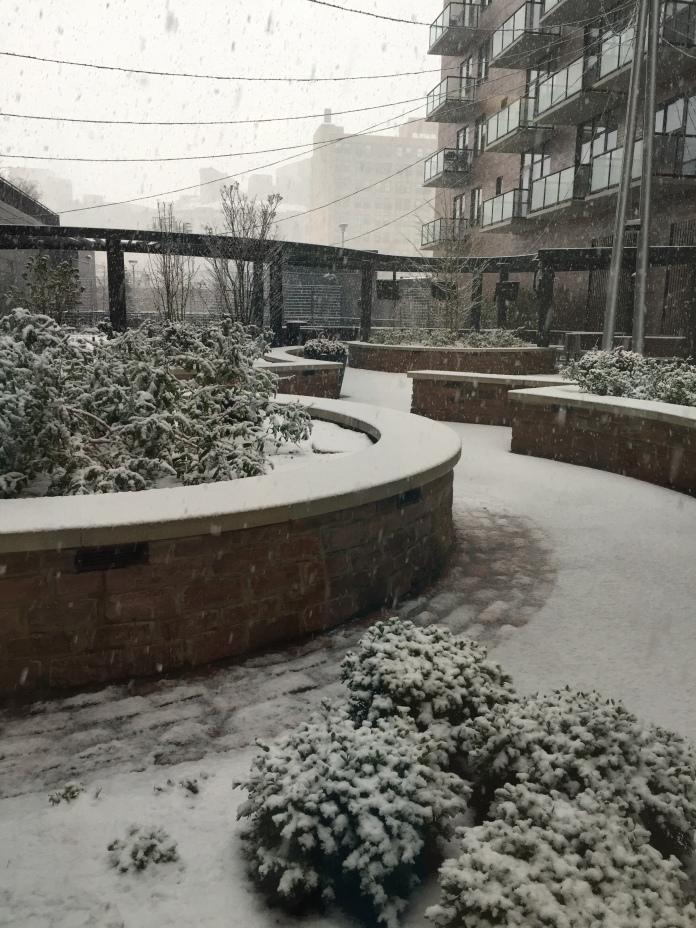 Snow & Daniel 024